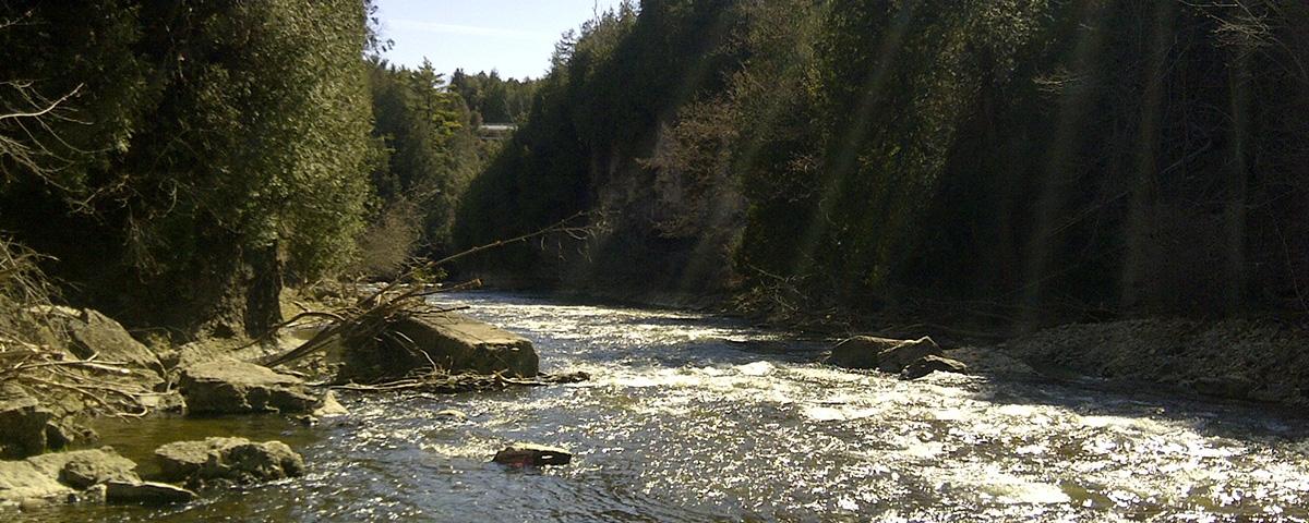 irvine-river-elora